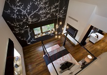 Fromental - black prunus overhead shot �������� ���� � ���������