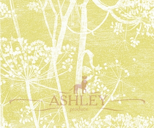 Cow-Parsley_66-7051-HR Cole & Son New Contemporary Бумажные обои Англия
