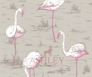 Flamingos_66-6042-HR Cole & Son New Contemporary Бумажные обои Англия