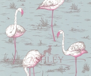 Flamingos_66-6044-HR Cole & Son New Contemporary Бумажные обои Англия