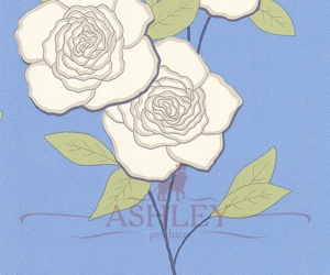 Paper-Roses-69-6122-HR Cole & Son New Contemporary 2 Бумажные обои Англия