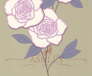 Paper-Roses-69-6123-HR Cole & Son New Contemporary 2 Бумажные обои Англия